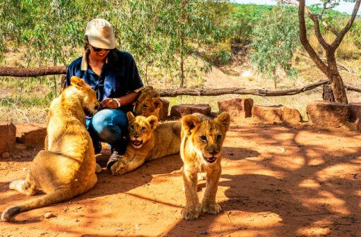 Santuário do Leão